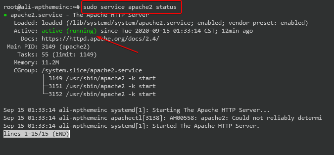 apache server-status checking by executing command on debian