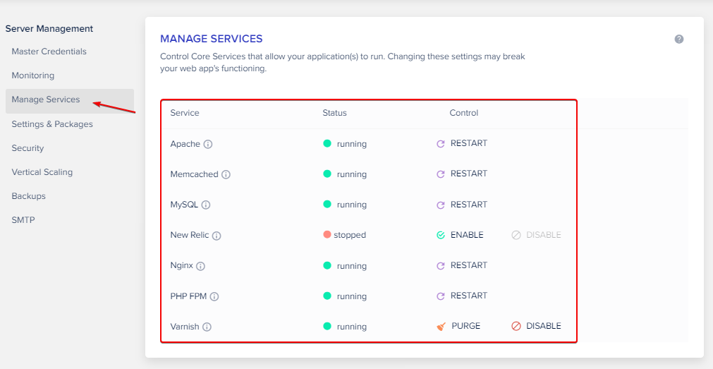Manage Services on Cloudways