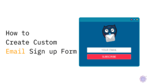 Create Custom Email Sign up Form -